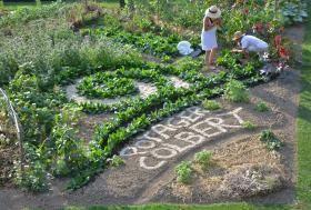 Château Colbert - Vegetable garden